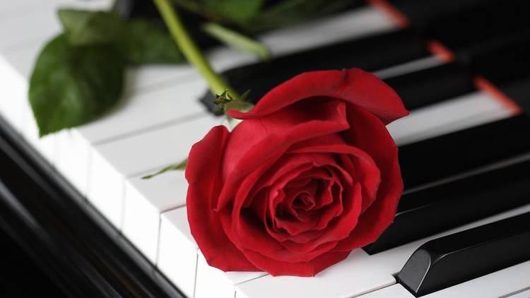 Late Night Piano Recital